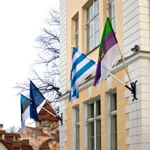 Flaggor vid Gustav Adolfs gymnasium i Tallinn.