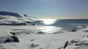 Talvimaisema meren rannalla