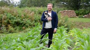 Jan Lindholm och hunden Sanfrid mitt bland tobaksplantorna.