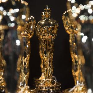 Oscarsstatyetter som väntar på sina nya ägare