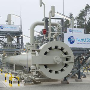 Nordstream-logon då den nyligen fästs vid anläggningen i Lubmin, nära Greifswald i Tyskland 8.11.2011.