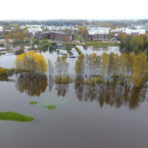 Översvämmade områden i Esbo 12.10.2017.