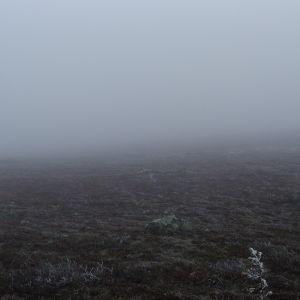syksyinen maisema tunturissa, horisontti katoaa sumuun