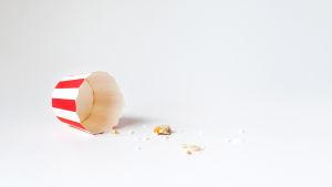 Tyhjä muffinssivuoka pöydällä, jäljellä vain muruset.