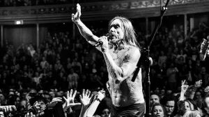 Yle Live: Iggy Pop Albert Hallissa