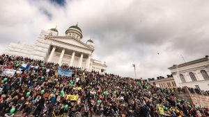 Demonstranter på trapporna vid Domkyrkan i Helsingfors.