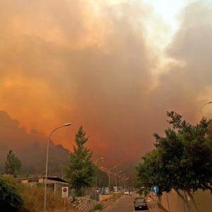 Lågor och rök sprider sig över staden Messina i Italien den 11 juli 2017.