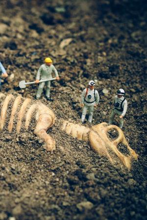 Pienet muovihahmot kaivavat dinosauruksen luurankoa esiin hiekasta.