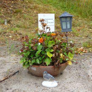 En hunds grav vid smådjursbegravningsplatsen i Vasa