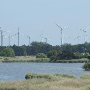 Dansk vindkraftspark, somamren 2014