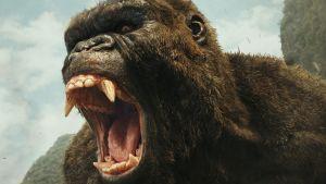 När bild av Kong.