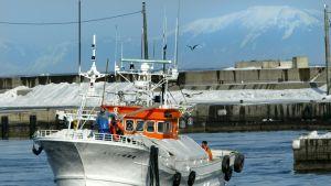 Ryssland och Japan förhandlar om ökat ekonomiskt samarbete  som fiske kring de omtvistade öarna. Bergen på Kunashiri skymtar i bakgrunden