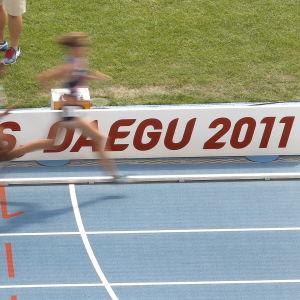Friidrottare springer på banan under VM 2011.