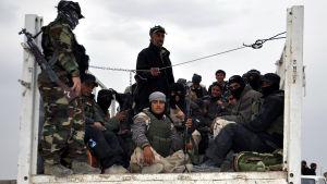 Frivilliga har anslutit sig till de irakiska regeringsstyrkorna i kriget mot IS.