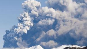 Eyjafjallajokulls utbrott 2010
