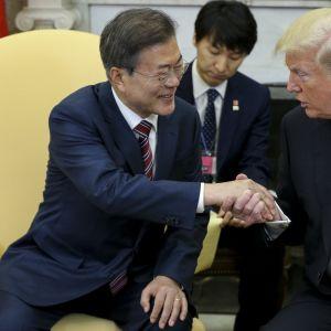 Trump och Moon Jae-in träffades i Vita huset.