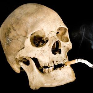 En skalle med en tobak i munnen.