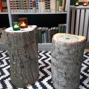 Två mosaikstubbar klara i Strömsö villans bibliotek.