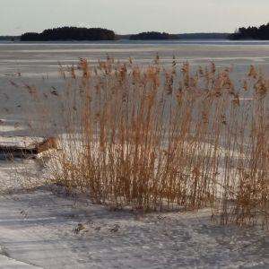 Bruksfjärden isbelagd med vassrugg rester av en brygga och holmar i bakgrunden
