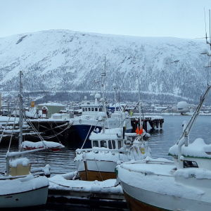 snöklädda fisskebåtar i vintrig vik, högt fjäll i bakgrunden