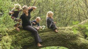 Familjen sitter på en trädstam ute i skogen