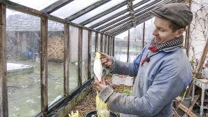 Frank Erichsen ser över sina odlingar i första avsnittet av säsong 16.