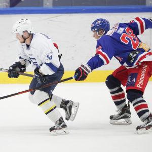 Mikko Laine i en av sina 327 matcher i Mestis grundserie.