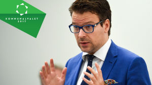 Ville Niinistö, De gröna