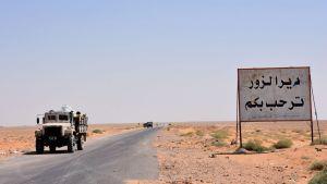 Syriska armétrupper vid gränsen till Deir el-Zor den 3 september 2017
