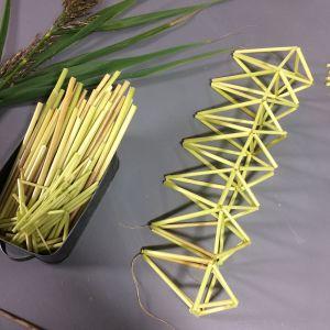 Vasstrån uppträdda till geometriska figurer