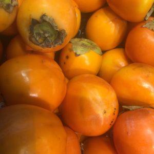 Keltaisia, tomaatin näköisiä persaimoni-eli kakihedelmiä kuvan täydeltä