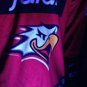 Vasa Sport-logo