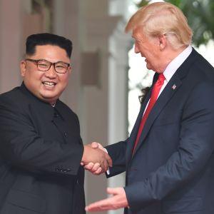 Kim Jong-Un och Donald Trump skakar hand.