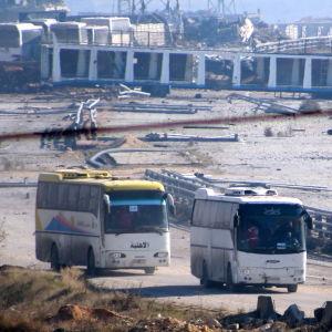 Bussar som evakuerar människor från den syriska staden Aleppo