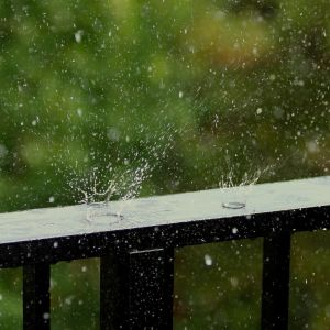 Regndroppar smattrar mot ett staket.