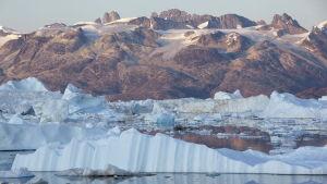 Bild tagen av Greenpeace på issmältningen vid glaciären Helheim i sydöstra Grönland i september 2009