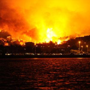Skogsbränderna en bit utanför Split i Kroatien.