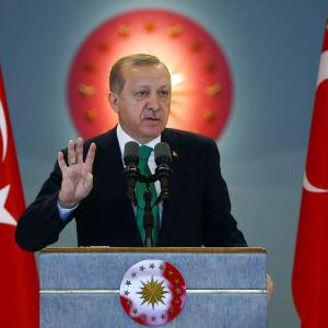Oppositionen befarar att president Recep Tayyip Erdoğa får nästan oinskränkt makt om grundlagsändringen godkänns i en folkomröstning i april