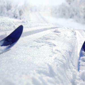 Skidspår i gnistrande snö.
