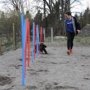 Emilia Lindström och agilityhunden Myran på träningsplan.