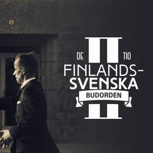 De tio finlandssvenska budorden artikel 2