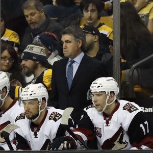Dave Tippett står bakom några spelare på bänken