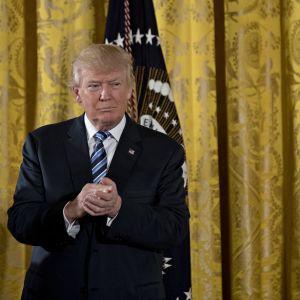 Donald Trump anklagas för att bryta mot grundlagen då han inte har brutit banden till sina bolag innan han svors in som president.