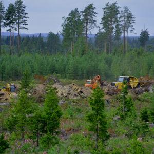 En vid bild av skog där några grävmaskiner och en dumper syns.