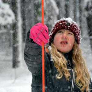 En flicka står i en snöig skog och håller i en pinne som man kan mäta höjda på träd med.