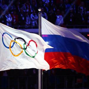 Rysslands flagga.