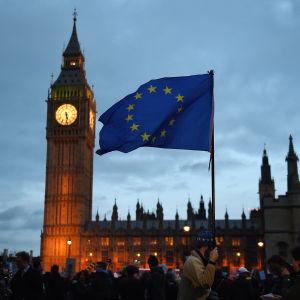 Protest utanför det brittiska parlamentet mot brexit.