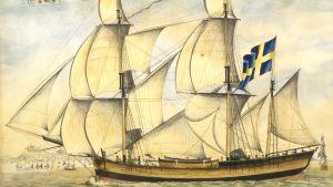 Barkskeppet Fortuna byggt 1792 vid Umeälven. Oljemålning utförd i Ancona i Italien 1795. Sjöfartens stora betydelse för Umeå framgår på många ställen i Pehr Stenbergs  verk. Han beskriver initierat sina resor på segelfartyg till och från Åbo via Stockholm