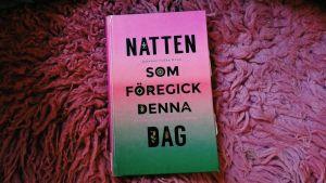 Johanne Lykke Holms bok Natten som föregick denna dag.