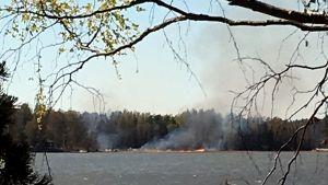Markdbrand vid strand.